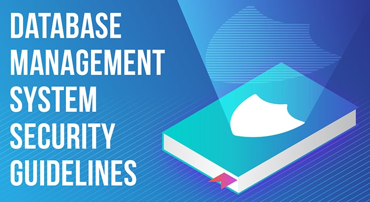 Database Management System Security Guidelines