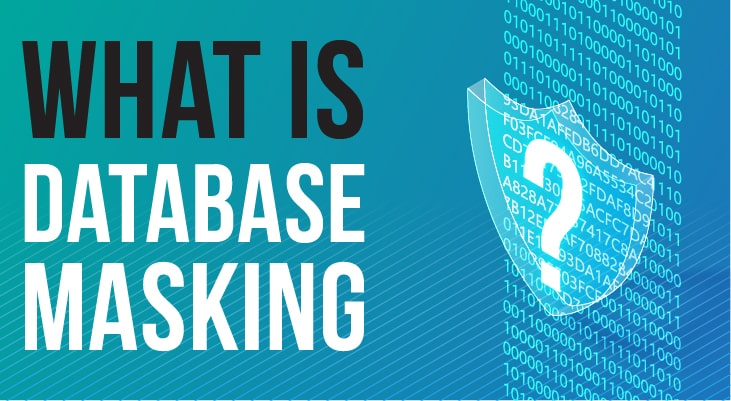 What is Data Masking?