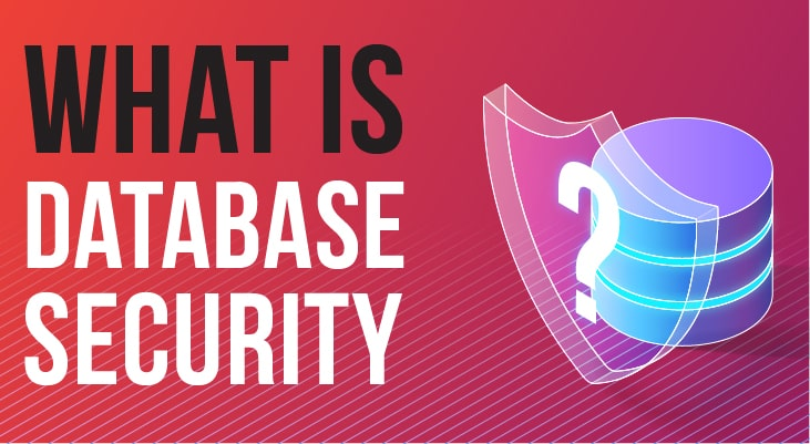 What is Database Security