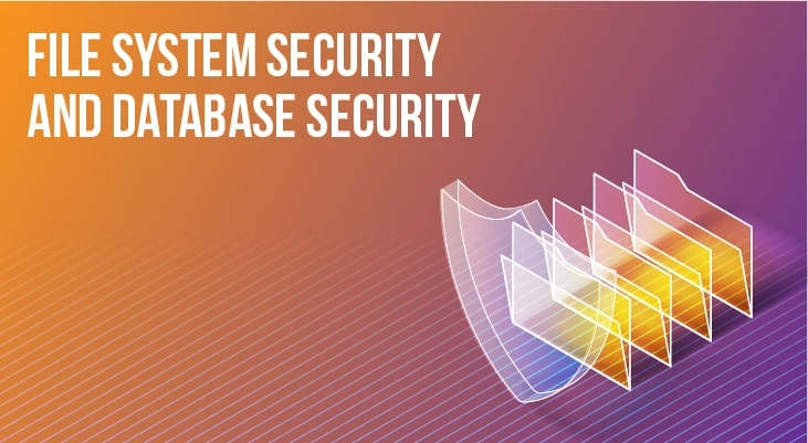 What Сan be Used to Provide Both File System Security and Database Security?