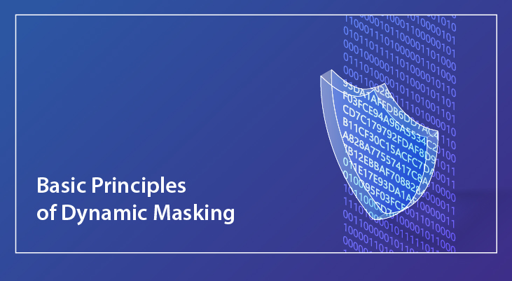 Basic Principles of Dynamic Masking